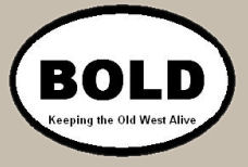 Bold Oval Bumper Sticker